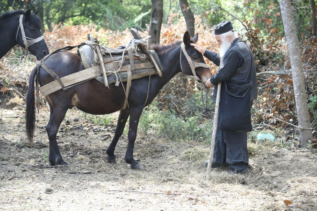 Mount Athos Toil and Determination